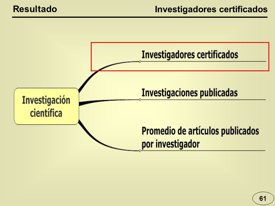 61 Resultado Investigadores certificados