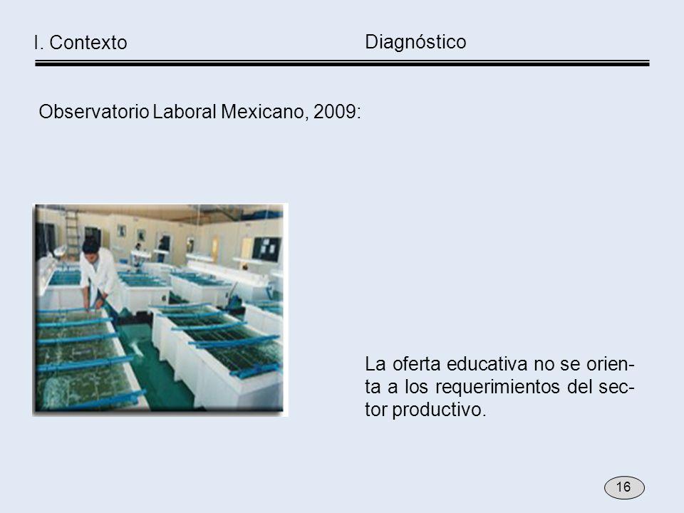 La oferta educativa no se orien- ta a los requerimientos del sec- tor productivo. Diagnóstico I. Contexto 16 Observatorio Laboral Mexicano, 2009: