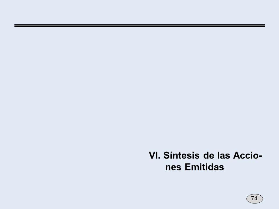 VI. Síntesis de las Accio- nes Emitidas 74