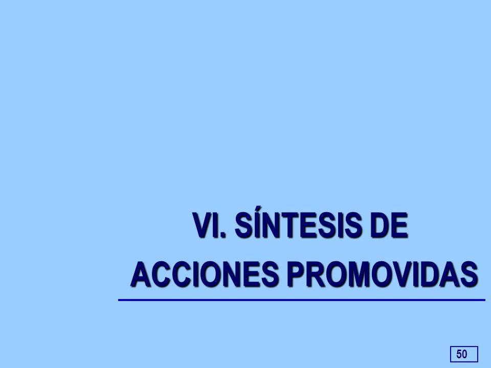50 VI. SÍNTESIS DE ACCIONES PROMOVIDAS