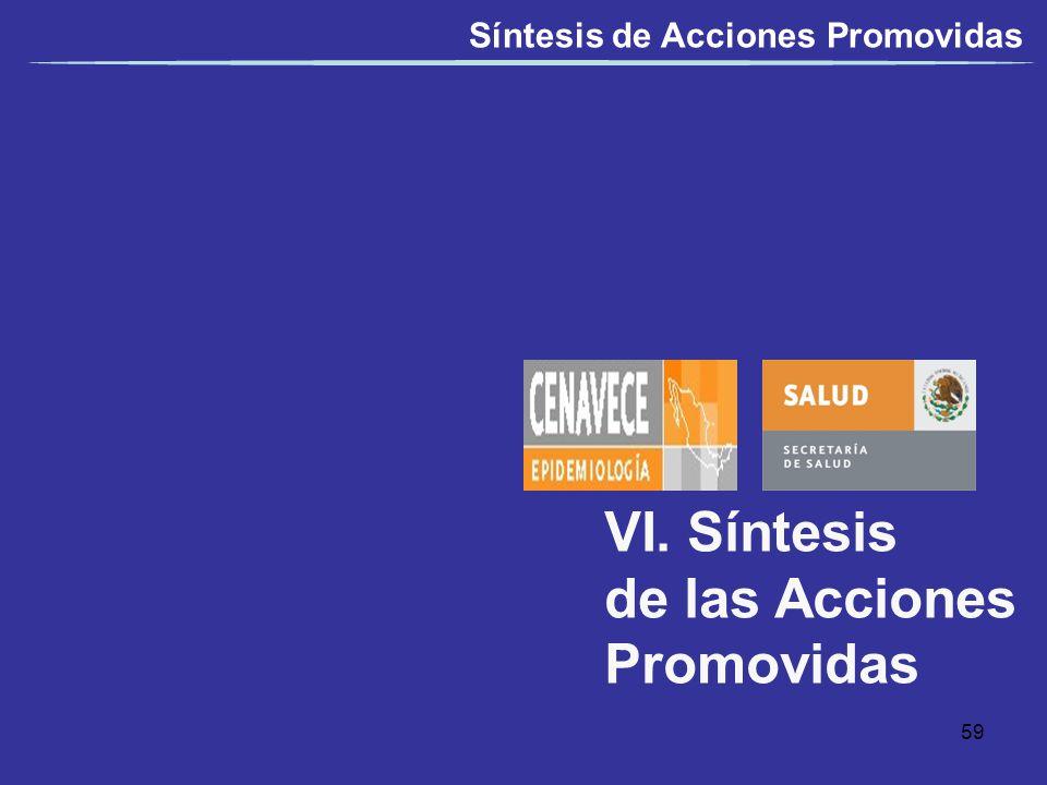 VI. Síntesis de las Acciones Promovidas Síntesis de Acciones Promovidas 59