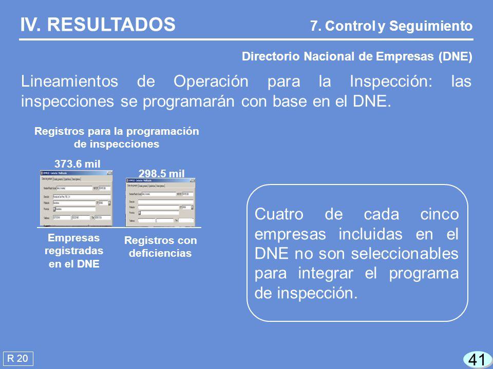 41 R 20 IV.RESULTADOS Directorio Nacional de Empresas (DNE) 7.