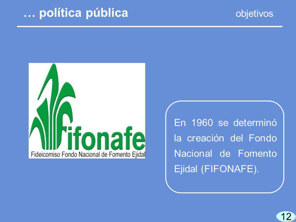 12 En 1960 se determinó la creación del Fondo Nacional de Fomento Ejidal (FIFONAFE).