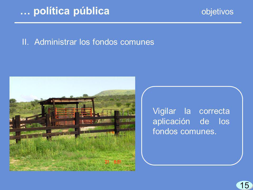 15 II. Administrar los fondos comunes Vigilar la correcta aplicación de los fondos comunes.
