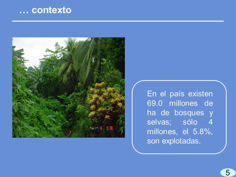 6 6 6 6 Los ejidos y comunidades del país tienen el 83% de los bosques y selvas. … contexto