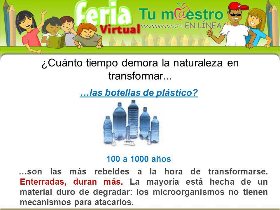 …las botellas de plástico? 100 a 1000 años …son las más rebeldes a la hora de transformarse. Enterradas, duran más. La mayoría está hecha de un materi