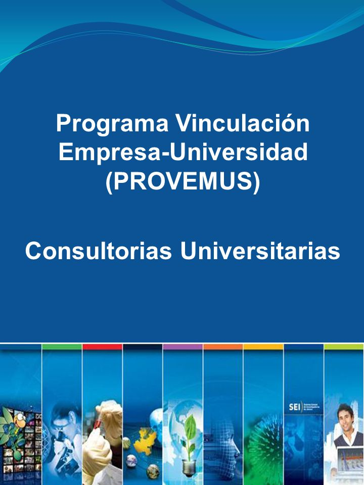 Programa Vinculación Empresa-Universidad (PROVEMUS) Consultorias Universitarias