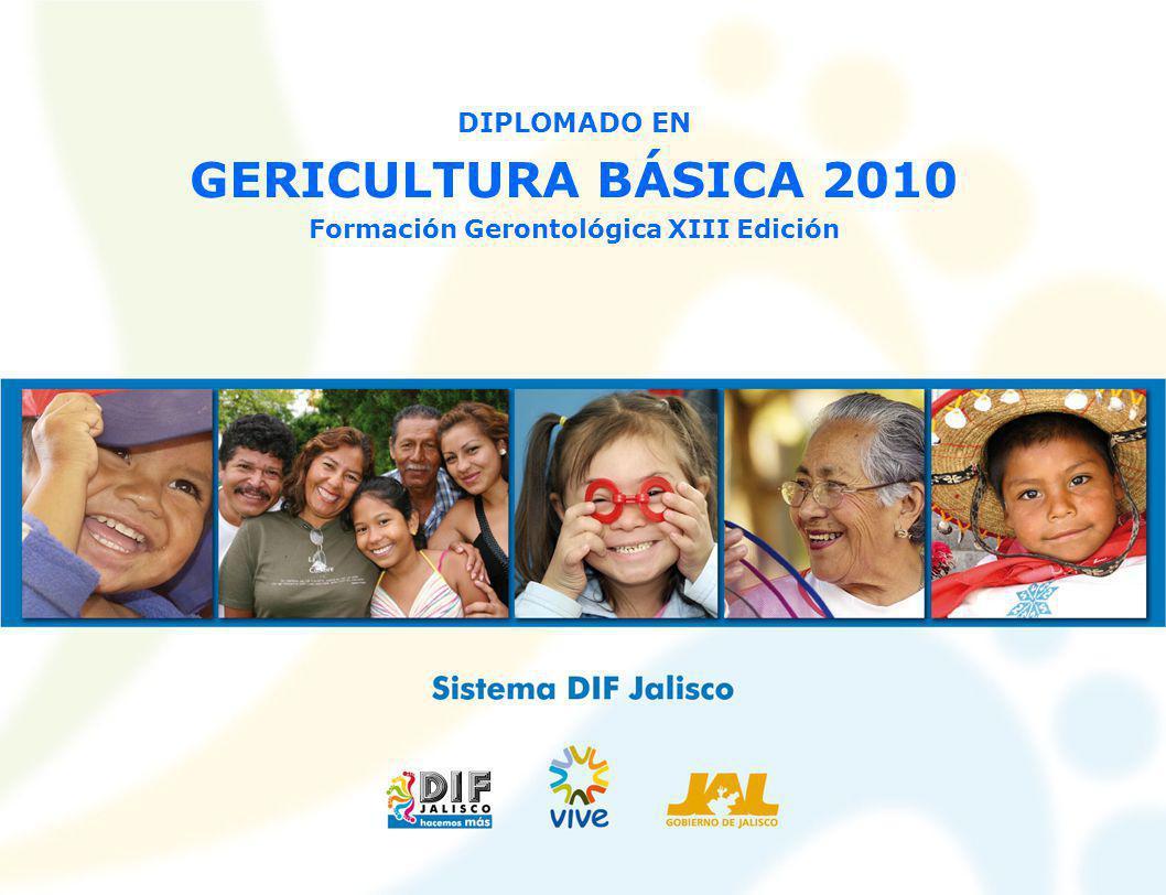 DIPLOMADO EN GERICULTURA BÁSICA 2010 Formación Gerontológica XIII Edición