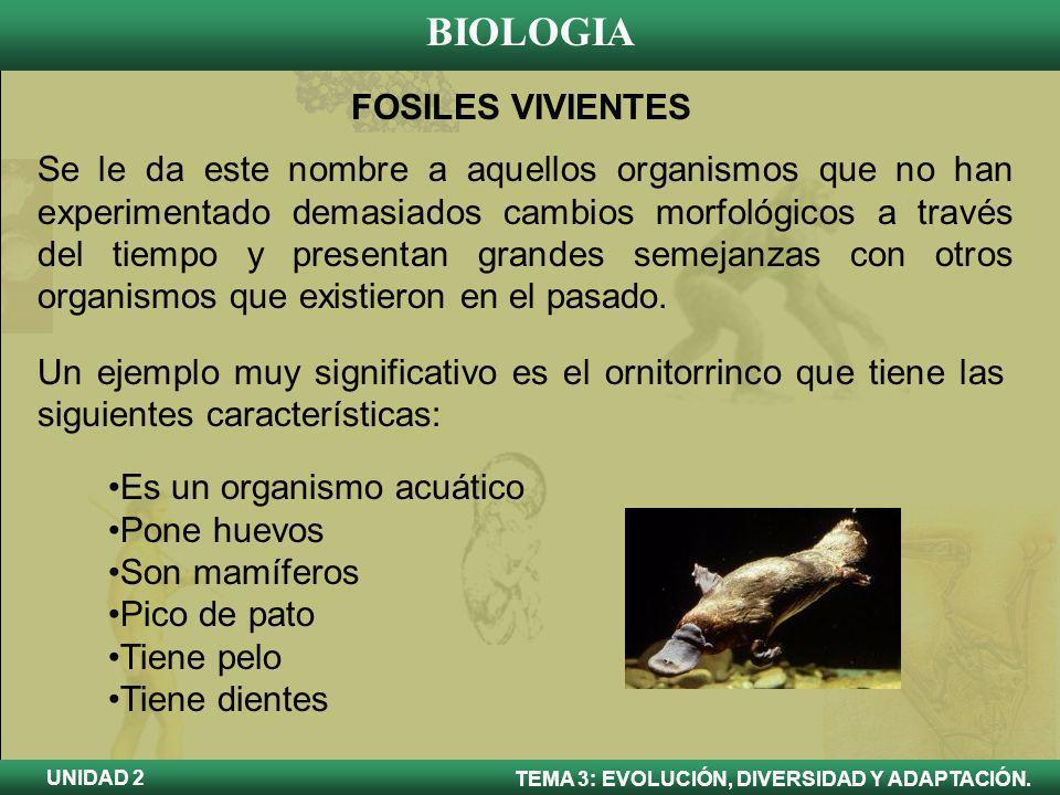 BIOLOGIA TEMA 3: EVOLUCIÓN, DIVERSIDAD Y ADAPTACIÓN. UNIDAD 2 Es un organismo acuático Pone huevos Son mamíferos Pico de pato Tiene pelo Tiene dientes