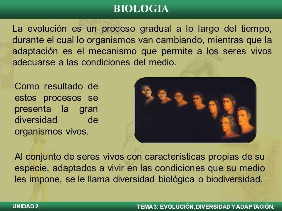 BIOLOGIA TEMA 3: EVOLUCIÓN, DIVERSIDAD Y ADAPTACIÓN. UNIDAD 2 La evolución es un proceso gradual a lo largo del tiempo, durante el cual lo organismos