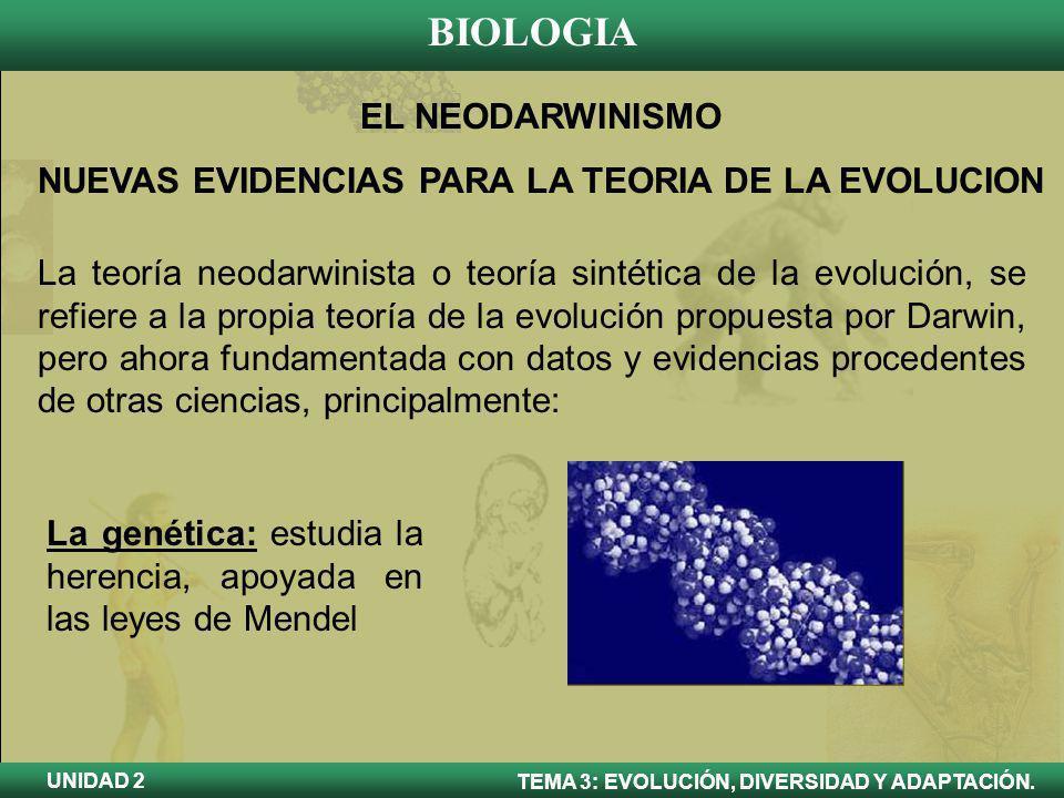 BIOLOGIA TEMA 3: EVOLUCIÓN, DIVERSIDAD Y ADAPTACIÓN. UNIDAD 2 EL NEODARWINISMO NUEVAS EVIDENCIAS PARA LA TEORIA DE LA EVOLUCION La teoría neodarwinist