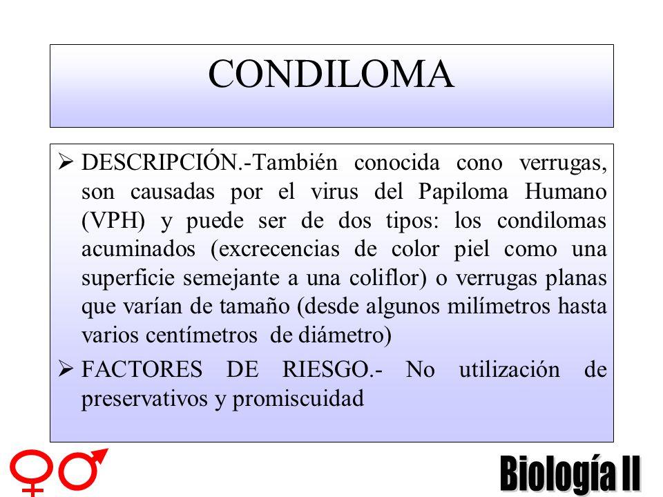 GUÍA DE ENFERMEDADES DE TRASMISIÓN SEXUAL CONDILOMA MOLUSCO CONTAGIOSO HERPES SÍFILIS GRANULOMA INGUINAL GONORREA HONGOS TRICOMONAS LADILLAS CLAMIDIA