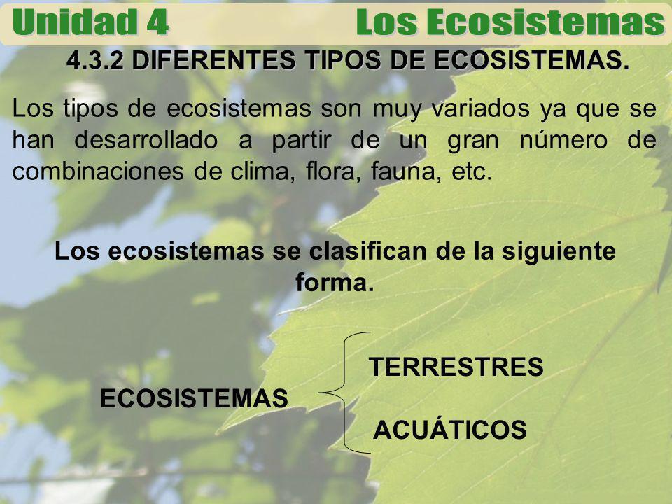 4.3.2 DIFERENTES TIPOS DE ECOSISTEMAS. Los tipos de ecosistemas son muy variados ya que se han desarrollado a partir de un gran número de combinacione