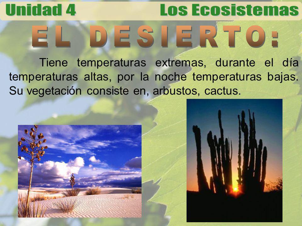 Tiene temperaturas extremas, durante el día temperaturas altas, por la noche temperaturas bajas. Su vegetación consiste en, arbustos, cactus.