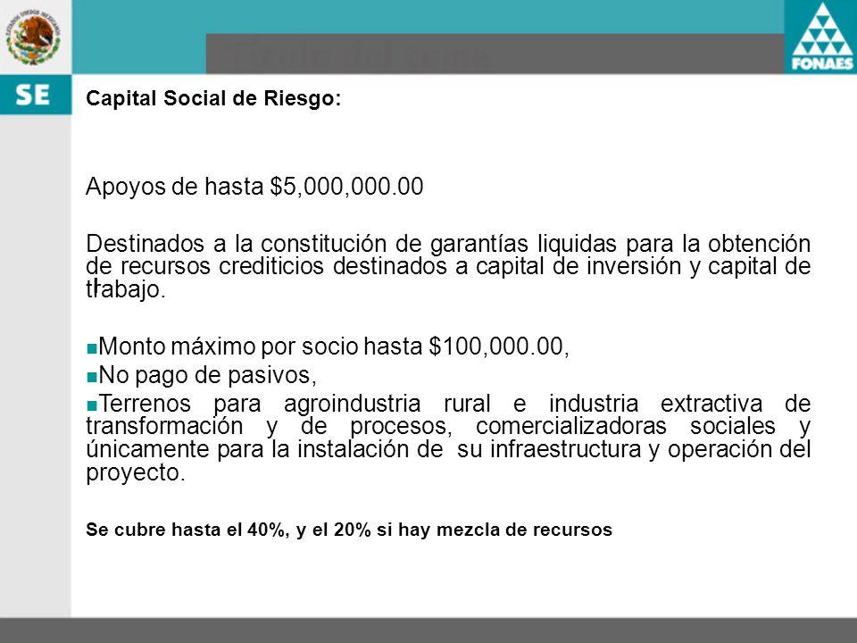 I Capital Social de Riesgo: Apoyos de hasta $5,000,000.00 Destinados a la constitución de garantías liquidas para la obtención de recursos crediticios