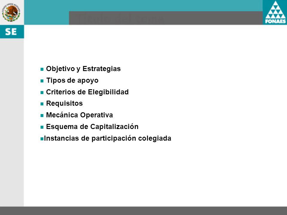 Objetivo y Estrategias Tipos de apoyo Criterios de Elegibilidad Requisitos Mecánica Operativa Esquema de Capitalización Instancias de participación co