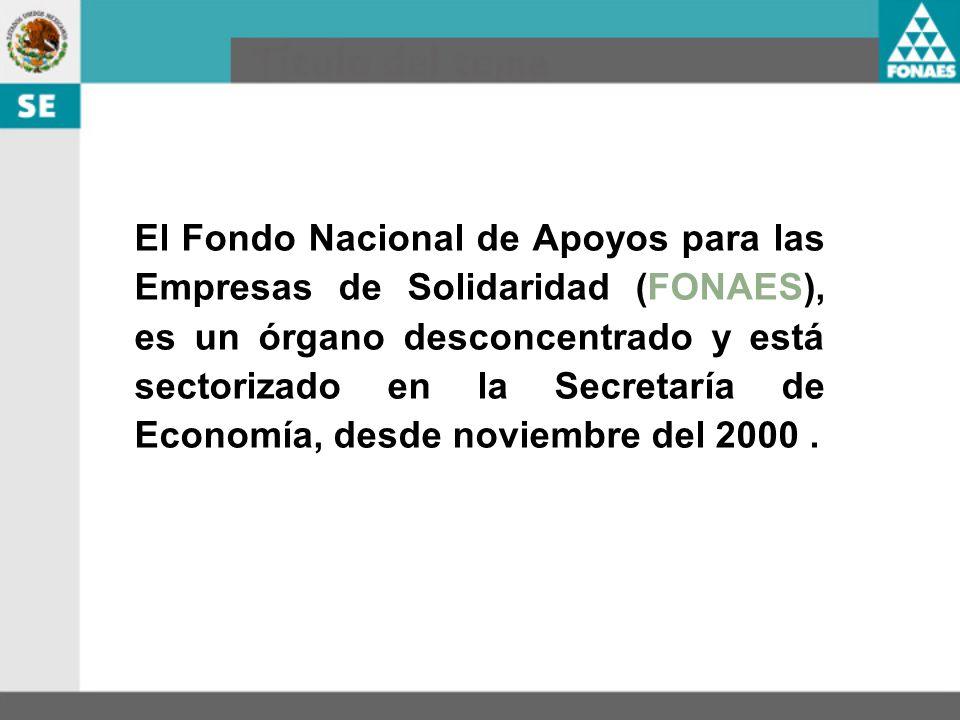 El Fondo Nacional de Apoyos para las Empresas de Solidaridad (FONAES), es un órgano desconcentrado y está sectorizado en la Secretaría de Economía, de