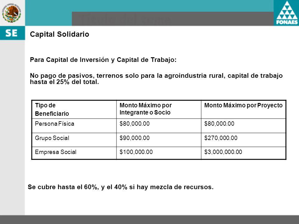 Capital Solidario Tipo de Beneficiario Monto Máximo por Integrante o Socio Monto Máximo por Proyecto Persona Física$80,000.00 Grupo Social$90,000.00$2