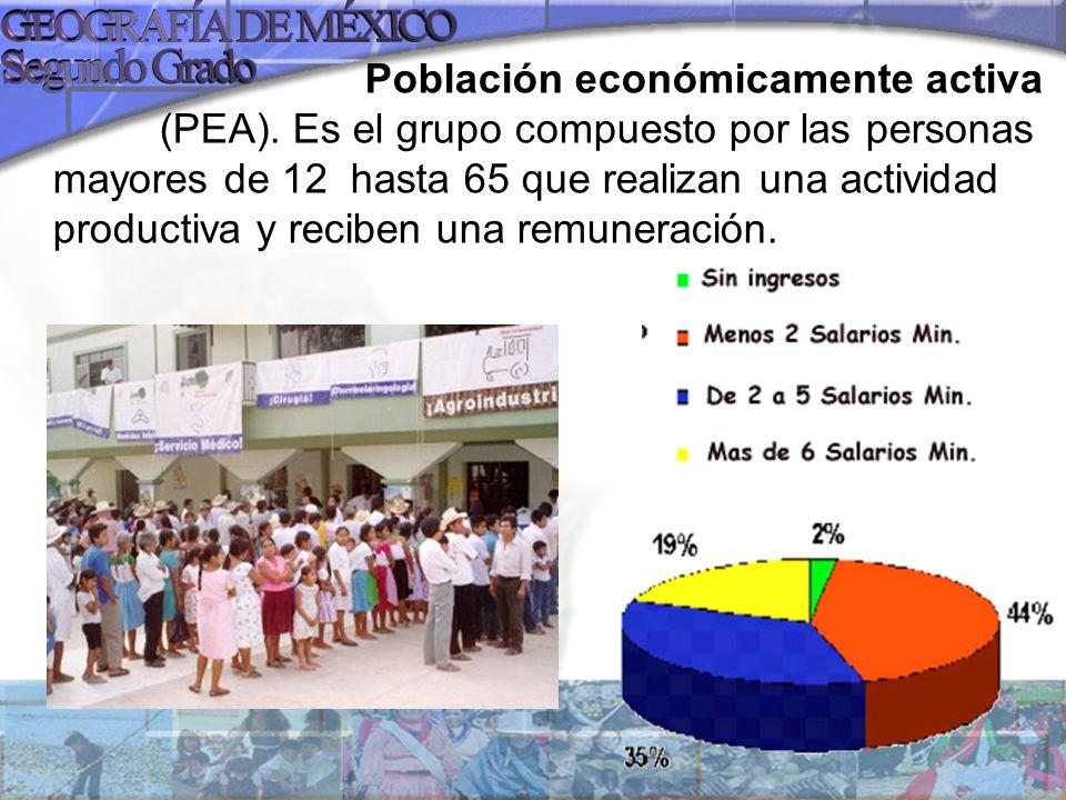 Población económicamente activa (PEA). Es el grupo compuesto por las personas mayores de 12 hasta 65 que realizan una actividad productiva y reciben u