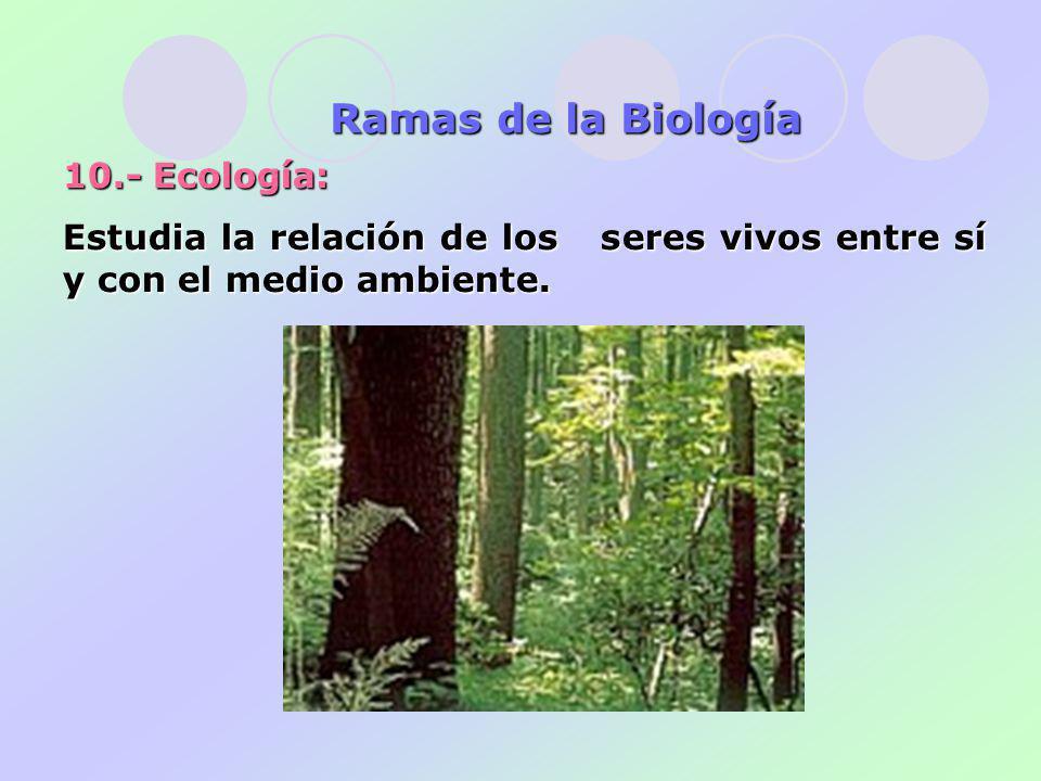 10.- Ecología: Estudia la relación de los seres vivos entre sí y con el medio ambiente.