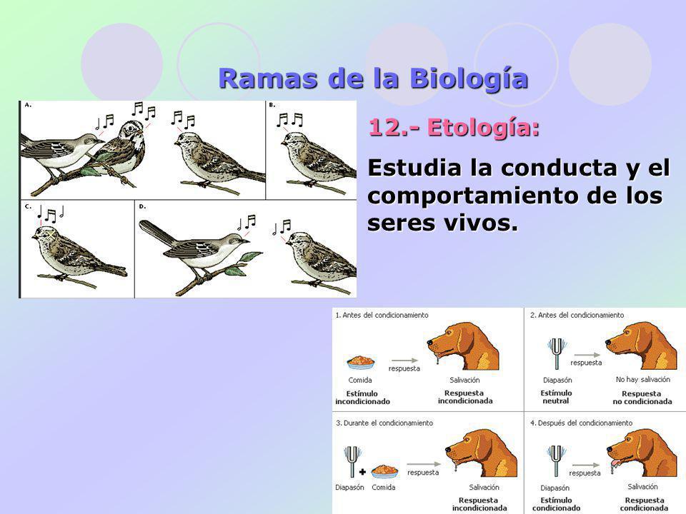 12.- Etología: Estudia la conducta y el comportamiento de los seres vivos. Ramas de la Biología