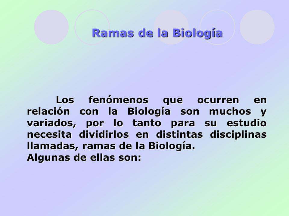 Los fenómenos que ocurren en relación con la Biología son muchos y variados, por lo tanto para su estudio necesita dividirlos en distintas disciplinas llamadas, ramas de la Biología.