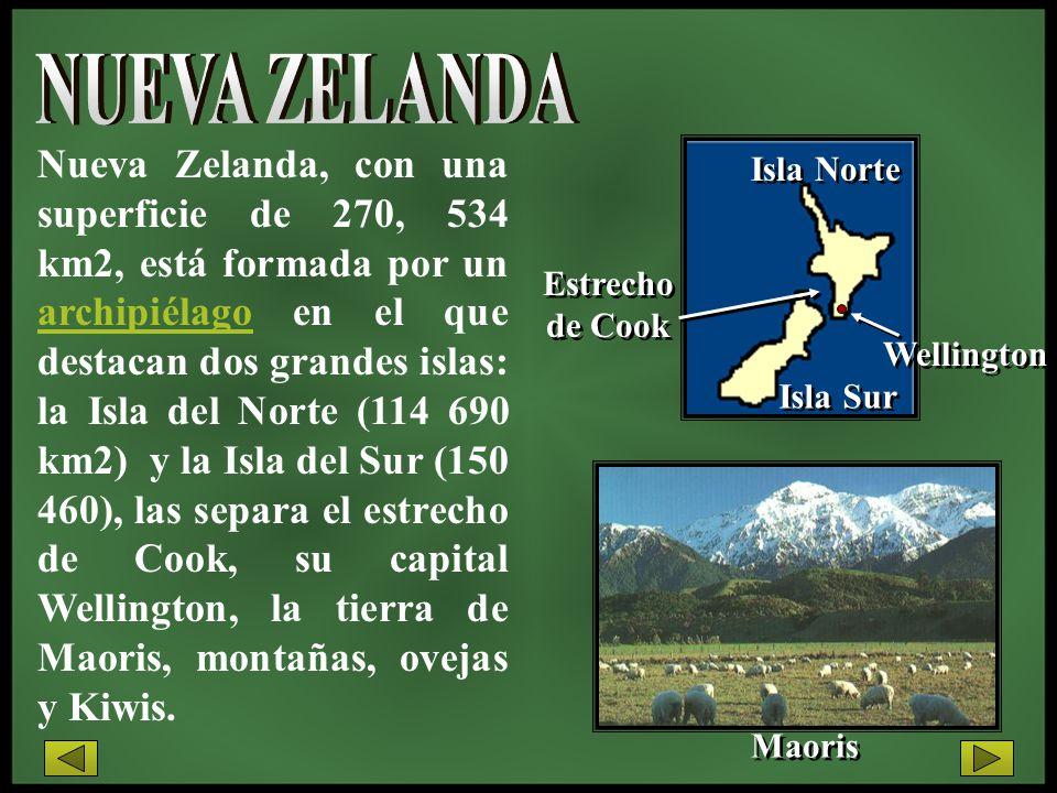 Nueva Zelanda, con una superficie de 270, 534 km2, está formada por un archipiélago en el que destacan dos grandes islas: la Isla del Norte (114 690 k