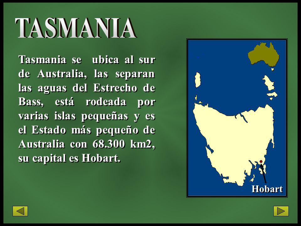Tasmania se ubica al sur de Australia, las separan las aguas del Estrecho de Bass, está rodeada por varias islas pequeñas y es el Estado más pequeño d