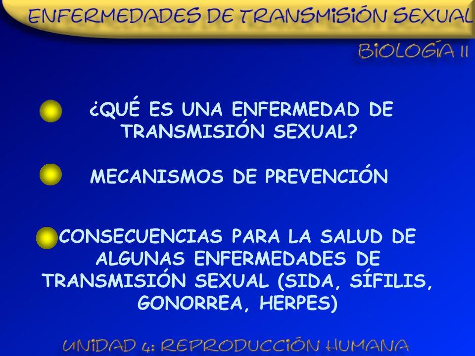 ¿QUÉ ES UNA ENFERMEDAD DE TRANSMISIÓN SEXUAL?
