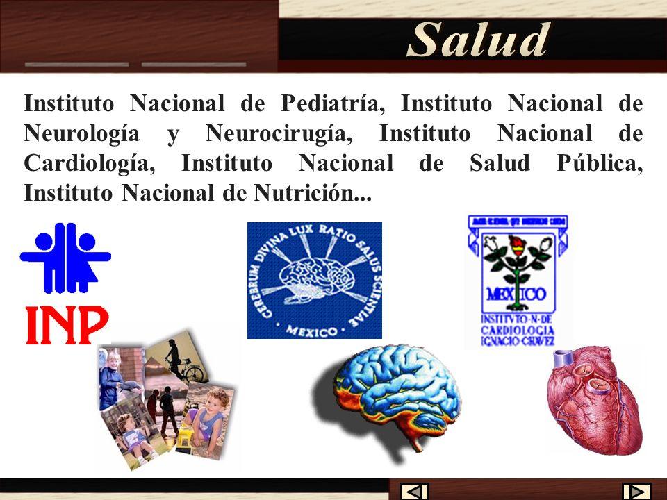 Son organismos descentralizados de la Administración Pública Federal, con personalidad jurídica y patrimonio propios, agrupados en el Sector Salud, qu