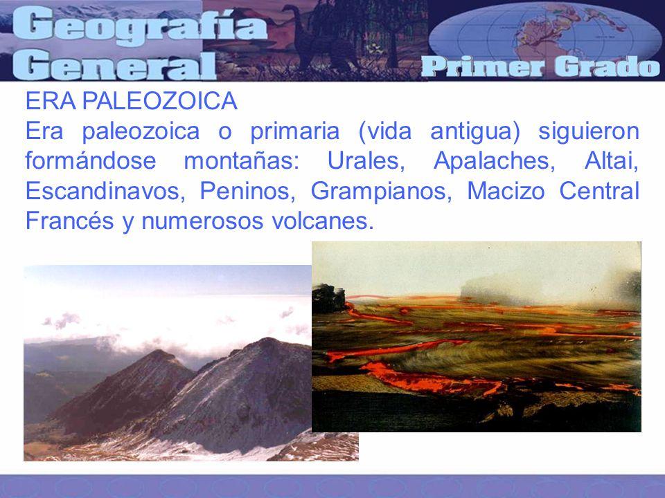 ERA PALEOZOICA Era paleozoica o primaria (vida antigua) siguieron formándose montañas: Urales, Apalaches, Altai, Escandinavos, Peninos, Grampianos, Macizo Central Francés y numerosos volcanes.