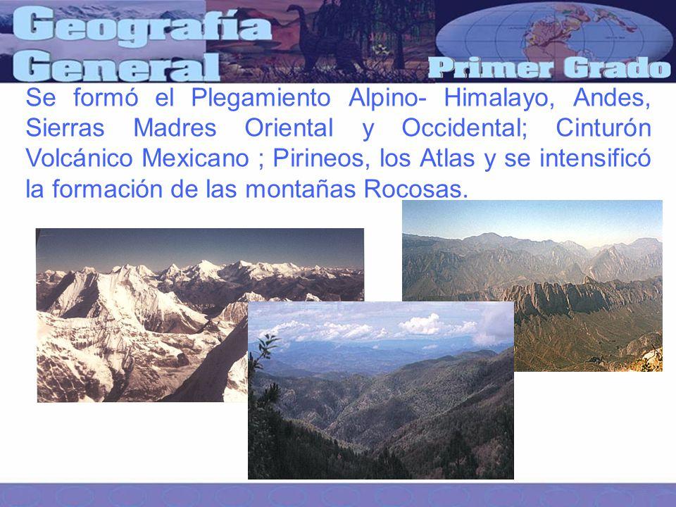 Se formó el Plegamiento Alpino- Himalayo, Andes, Sierras Madres Oriental y Occidental; Cinturón Volcánico Mexicano ; Pirineos, los Atlas y se intensificó la formación de las montañas Rocosas.