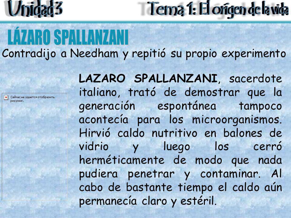 LAZARO SPALLANZANI, sacerdote italiano, trató de demostrar que la generación espontánea tampoco acontecía para los microorganismos. Hirvió caldo nutri