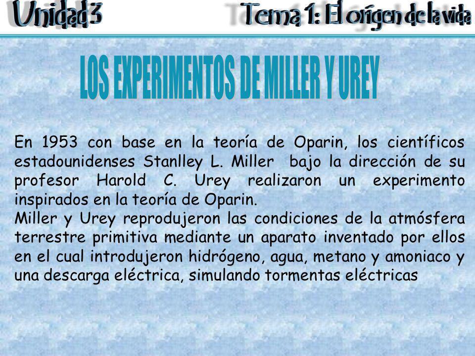 En 1953 con base en la teoría de Oparin, los científicos estadounidenses Stanlley L. Miller bajo la dirección de su profesor Harold C. Urey realizaron