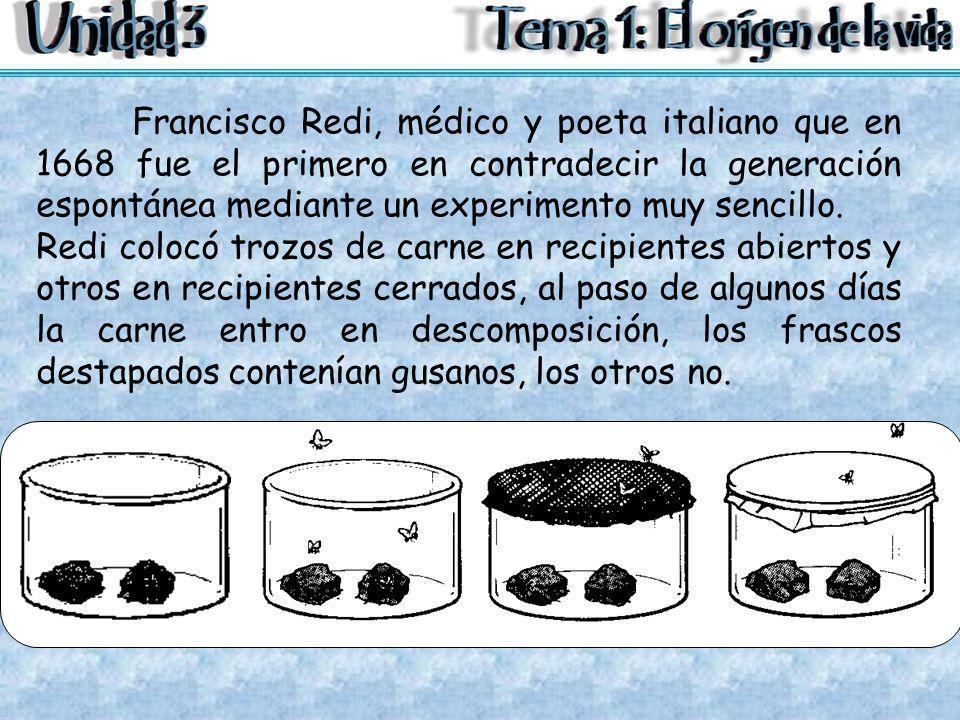 Francisco Redi, médico y poeta italiano que en 1668 fue el primero en contradecir la generación espontánea mediante un experimento muy sencillo. Redi