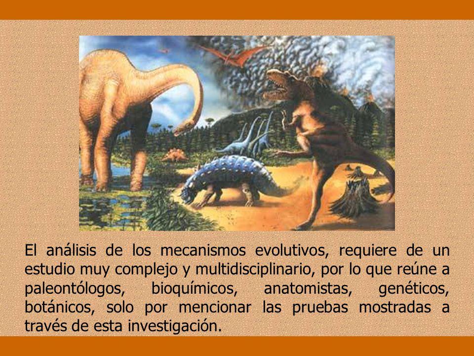 Etología: La etología es el estudio del comportamiento animal. Este estudio también nos da pruebas para demostrar cuan emparentadas están las especies