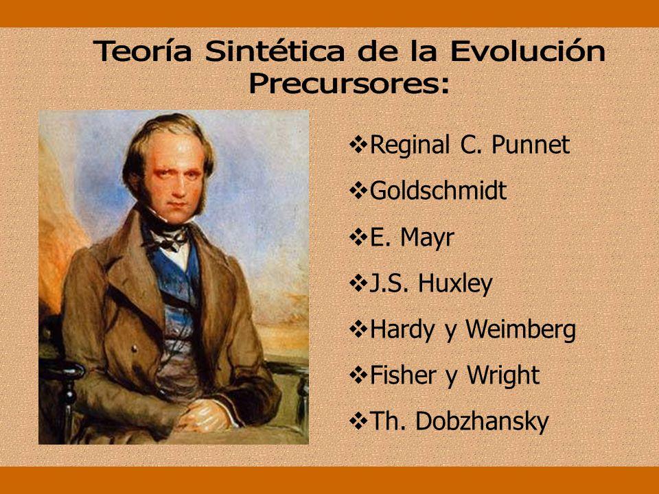 La teoría biológica de la evolución ve en las poblaciones y en las especies las unidades básicas de la evolución. El cambio evolutivo se realiza media