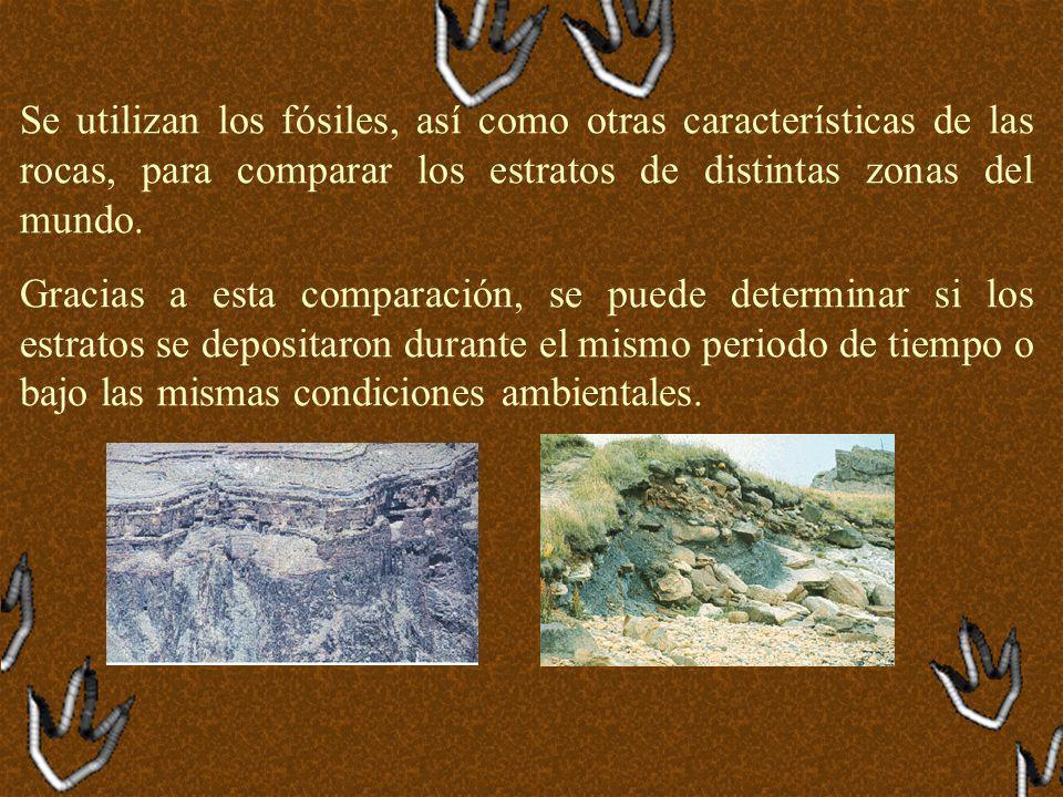 El método de uranio 235-238, por ejemplo, sirvió para calcular la edad de la Tierra en aproximadamente 4 600 millones de años.