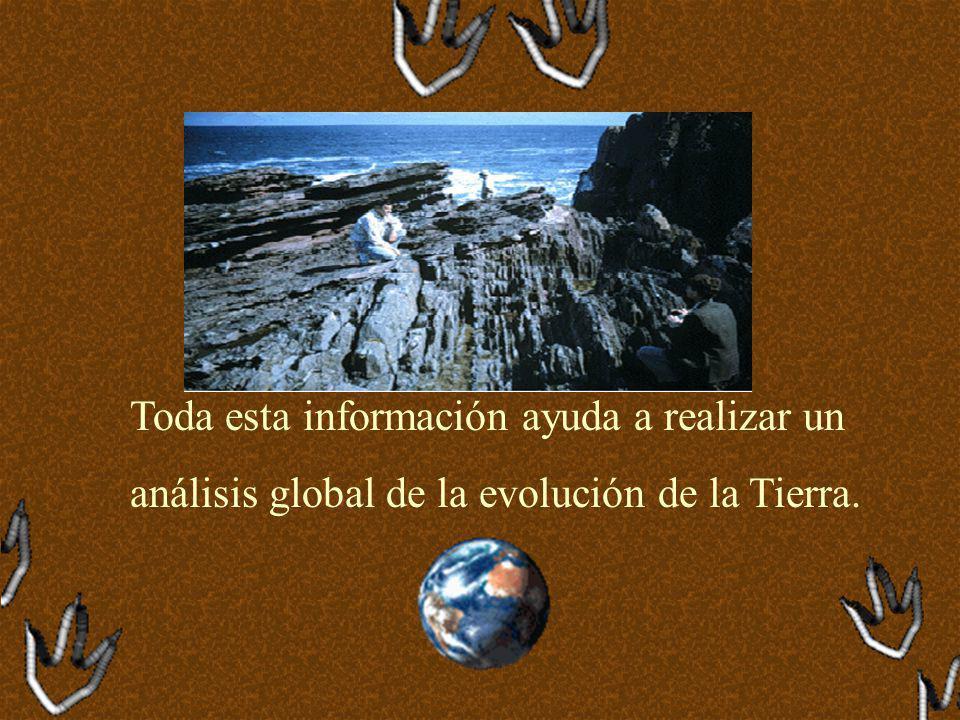 Toda esta información ayuda a realizar un análisis global de la evolución de la Tierra.