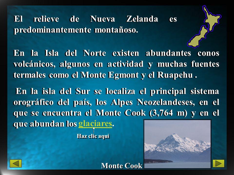 En la Isla del Norte existen abundantes conos volcánicos, algunos en actividad y muchas fuentes termales como el Monte Egmont y el Ruapehu. En la isla