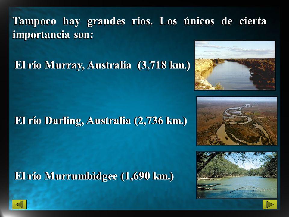 El río Murray, Australia (3,718 km.) Tampoco hay grandes ríos. Los únicos de cierta importancia son: El río Murrumbidgee (1,690 km.) El río Darling, A