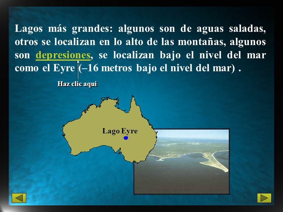 Lagos más grandes: algunos son de aguas saladas, otros se localizan en lo alto de las montañas, algunos son depresiones, se localizan bajo el nivel de