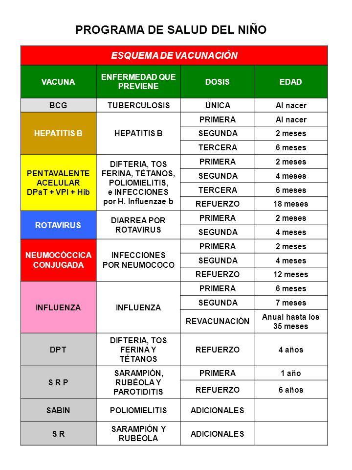 ESQUEMA DE VACUNACIÓN VACUNA ENFERMEDAD QUE PREVIENE DOSISEDAD BCGTUBERCULOSISÚNICAAl nacer HEPATITIS B PRIMERAAl nacer SEGUNDA2 meses TERCERA6 meses PENTAVALENTE ACELULAR DPaT + VPI + Hib DIFTERIA, TOS FERINA, TÉTANOS, POLIOMIELITIS, e INFECCIONES por H.