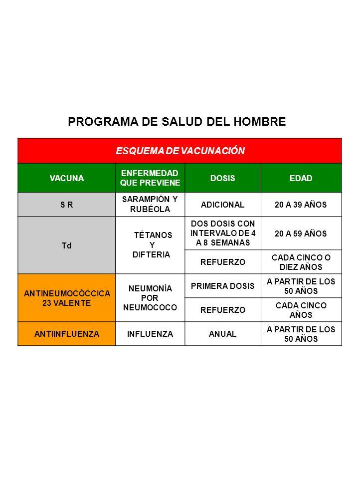 PROGRAMA DEL ADULTO MAYOR ESQUEMA DE VACUNACIÓN VACUNA ENFERMEDAD QUE PREVIENE DOSISEDAD Td TÉTANOS Y DIFTERIA DOS DOSIS CON INTERVALO DE 4 A 8 SEMANAS A PARTIR DE LOS 60 AÑOS REFUERZO CADA CINCO O DIEZ AÑOS ANTINEUMOCÓCCICA 23 VALENTE NEUMONÍA POR NEUMOCOCO PRIMERA DOSIS A PARTIR DE LOS 60 AÑOS REFUERZOCADA CINCO AÑOS ANTIINFLUENZAINFLUENZAANUAL A PARTIR DE LOS 60 AÑOS