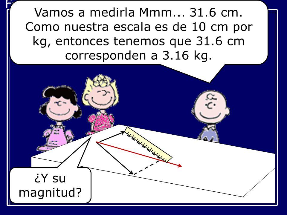 Fuerzas Concurrentes Vamos a medirla Mmm... 31.6 cm. Como nuestra escala es de 10 cm por kg, entonces tenemos que 31.6 cm corresponden a 3.16 kg. ¿Y s