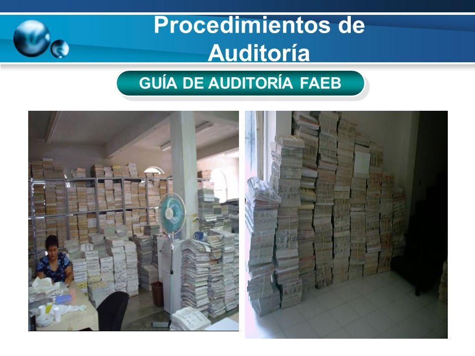 Procedimientos de Auditoría GUÍA DE AUDITORÍA FAEB