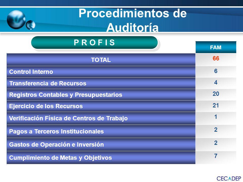 Procedimientos de Auditoría FAM TOTAL 66 Control Interno 6 Transferencia de Recursos 4 Registros Contables y Presupuestarios 20 Ejercicio de los Recur