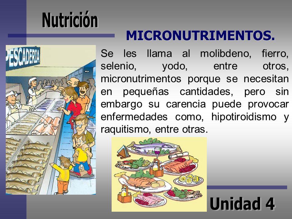 MICRONUTRIMENTOS. Se les llama al molibdeno, fierro, selenio, yodo, entre otros, micronutrimentos porque se necesitan en pequeñas cantidades, pero sin