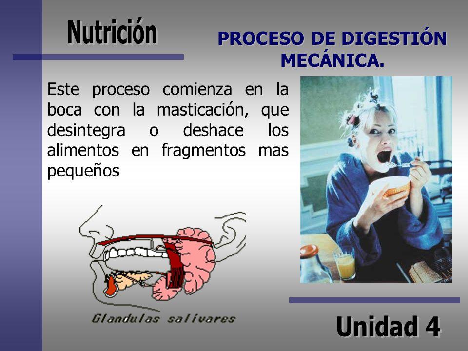 PROCESO DE DIGESTIÓN MECÁNICA. Este proceso comienza en la boca con la masticación, que desintegra o deshace los alimentos en fragmentos mas pequeños