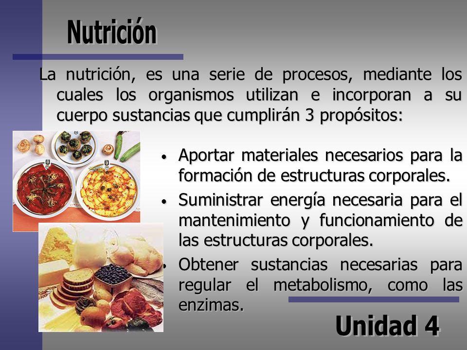 La nutrición, es una serie de procesos, mediante los cuales los organismos utilizan e incorporan a su cuerpo sustancias que cumplirán 3 propósitos: Ap